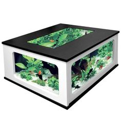 Fish tank coffee table, when I heard about this I liked the idea but the execution isn't a winner for me. Still cool though.