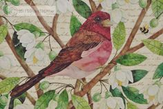 Before, and after embroidery » Blog Archive » Purple Finch Done!