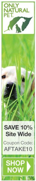 Herbs for cancer can be used not only in humans but also in dog patients.  This page introduces various herbal remedies that may be used to help your dog fight canine cancer.