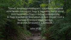idézet / inspiráció / erdő / környezetvédelem / slowlife / vissza a természethet