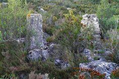 La ruta de la Concòrdia | A un tir de pedra