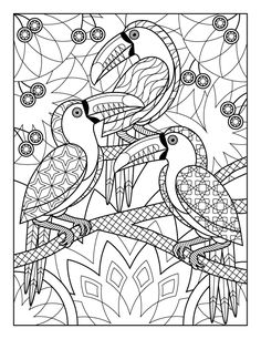 Pin By Priyanka Palaniswamy On Vector Doodle And Zentangle Draw