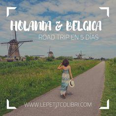 Ruta por libre en 5 dias Travel, Holland, Paths, Voyage, Viajes, Traveling, Trips, Tourism