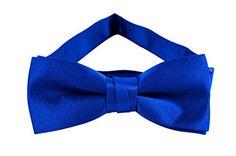 Zipper Ties, Great Neck, Paisley Tie, Boys Bow Ties, Skinny Ties, Royal Blue, Bows, Neckties