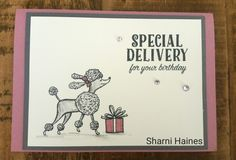 Stampin Up! Birthday Delivery by Sharni Haines. 2017/18 Catalogue