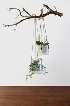 nice 41 Indoor Hanging Planters You Can Make Yourself http://godiygo.com/2017/12/04/41-indoor-hanging-planters-can-make/