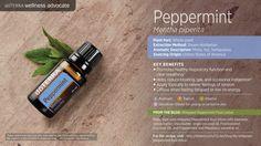 DIY Peppermint Sugar Scrub & Free Printable Labels