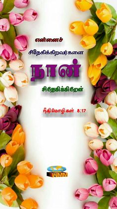 Bible Vasanam In Tamil, Tamil Bible Words, Bible Words Images, Scripture Pictures, Jesus Wallpaper, Bible Verse Wallpaper, Bible Quotes, Bible Verses, Jesus Father