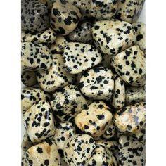 Dalmation Jasper Tumbled Stones