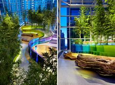архитектор: Микянг Ким -  Landscape as Nelly: Исцеление садами