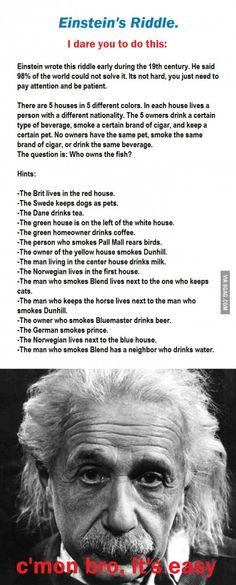I dare you: Einstein's riddle