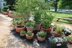 Pots for my garden