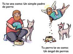 ilustración de como un perro ve a su amo como un ángel de perros