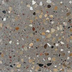 Terrazzo Flooring and Concrete Flooring Experts Arcadian