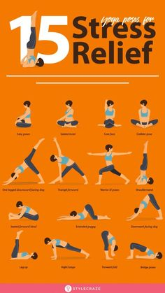 Gym Workout For Beginners, Fitness Workout For Women, Yoga Poses For Beginners, Workout Videos, Yoga Fitness, Health Fitness, Body Weight Leg Workout, Lower Belly Workout, Stress Yoga
