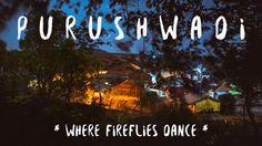 Fireflies Festival: Exploring the nights of Purushwadi Village with travellers to experience the magnificence of the tiny creatures Firefly Festival, Put On Your Shoes, Pack Your Bags, India, Places To Go, The Past, Creatures, Neon Signs, Fireflies