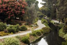 The 10 Most Beautiful Botanical Gardens Across The United States (PHOTOS)