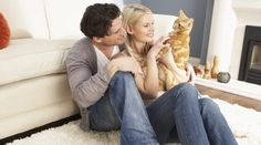 Signs of Obedient Behaviour in Cats, Cat Behavior