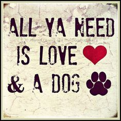 ALL YA NEED IS LOVE & A DOG  -photo credit to the owner #dogs #cats