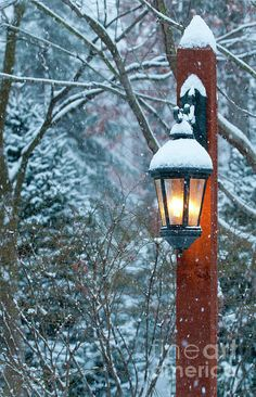 the beauty of winter.lamp light in winter. I Love Snow, I Love Winter, Winter Snow, Winter Christmas, Winter Light, Driveway Lighting, Winter Magic, Winter Scenery, Lights
