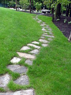 Camino de piedra 2