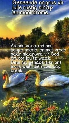 Morning Messages, Morning Greeting, Evening Quotes, Goeie Nag, Goeie More, Afrikaans Quotes, Good Night Quotes, Sleep Tight, Sweet Dreams