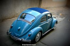 VW Beetle Volkswagen, Bug Car, Vw Parts, Cool Bugs, Beetle Car, Vw Bugs, Type I, First Car, Zoom Zoom