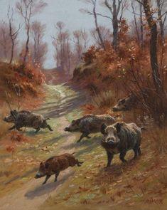 Georges Frédéric Rötig - Wild Boar, gouache, x cm. Wild Boar Hunting, Hunting Art, Hog Hunting, Wildlife Paintings, Wildlife Art, Animal Paintings, Animal Sketches, Animal Drawings, Mundo Animal