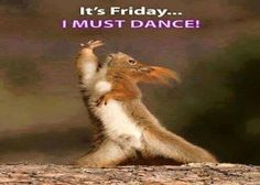 Happy Friday Meme, Happy Friday Dance, Its Friday Quotes, Friday Humor, Funny Friday, Work Memes, Work Humor, Funny Quotes, Funny Memes