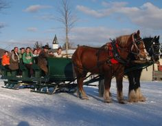 A family enjoys a sleigh ride, Shanty Creek, Michigan