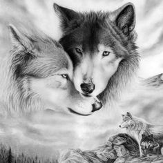 DIY Wolf Painting by Numbers Kit – Wolf Pack - Best Painting Acrylic 2019 Wolf Tattoos, Animal Tattoos, Animals Black And White, White Wolf, Gray Wolf, Black White, Wolf Mates, Tier Wolf, Watercolor Wolf