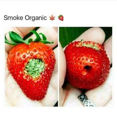 Strawberry pipe.