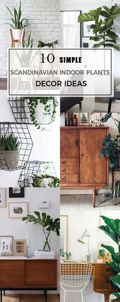 Check out these easy indoor plant ideas to achieve a simple minimal look | Scandinavian Design Interior Living | #scandinavian #interior