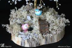 Socle de l'abricotier du Japon