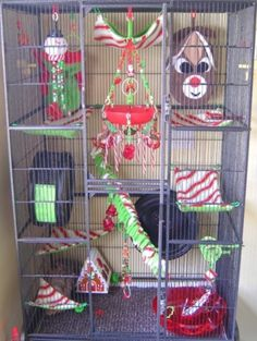 christmas theme cage set.  Jean, here is another one for the sugerbabys.