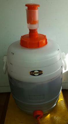 Triple Berry -  Muscadine Wine fermentation transferred to Speidel Fermenter  08-12-15