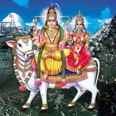 Sivapuranam Lyrics in Tamil with Meaning - சிவபுராணம் Shiva Parvati Images, Tantra Art, Lord Murugan Wallpapers, Shiva Photos, Ganesh Photo, Shiva Shankar, Lord Shiva Hd Wallpaper, Kali Goddess, Lord Shiva Family