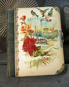 Antique Victorian Photo Album,Small,Celluloid,Roses & Birds