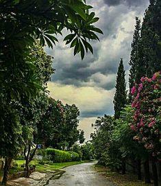 A street in Islamabad. Islamabad Pakistan, Pakistani Girl, Pakistan Travel, Heaven On Earth, Asia Travel, Iran, Travel Inspiration, Nature Photography, Countries