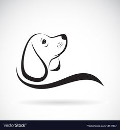 Beagle dog design on white background pet vector image on VectorStock