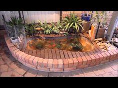 DIY Goldfish Pond Using Bathtub - YouTube