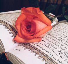 allah-cute-flower-islam-Favim.com-3137392.jpg (610×575)