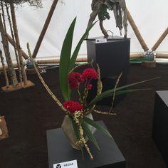 Composition florale (celosie) type Ikebana Ohara