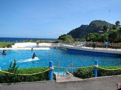 Sea Life Park Hawaii - Oahu