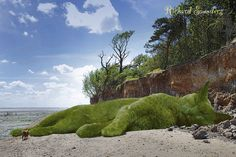 The Topiary Cat visits the seaside   by Rich Saunders