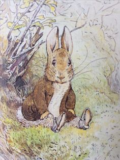 From 'The Tale of Benjamin Bunny' by Beatrix Potter published by the Folio Society. It's a gorgeous set of the 23 stories, with gold gilded pages, lovely illustrations and a blue case to keep them.