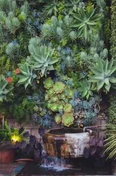 相片:Lush succulent wall planting. Located at Smog Shoppe in Los Angeles, California, U.S. Designer unknown. Photo by Jamie Street + Michelle Pullman. Photo via http://blog.radandinlove.com/2013/11/rebecca-james-smog-shoppe.html