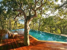Infinity pool with tree through deck