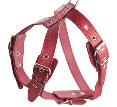Red Genuine Leather Dog Harness, Medium. 25'-30' Chest, 1' Wide Adjustable Straps, Amstaff * Check this awesome product by going to the link at the image.