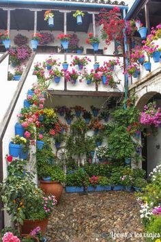 Arts And Crafts Office Furniture Beautiful Gardens, Beautiful Flowers, Spanish Garden, Love Decorations, Casa Patio, Balcony Flowers, Outdoor Steps, Garden Wall Art, Flower Festival